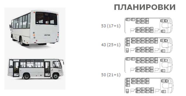 Планировка автобуса ПАЗ-3204
